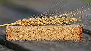 Hintergrundbilder Weizen Brot Hautnah Ähren Stück Lebensmittel
