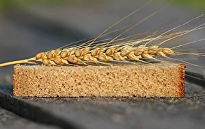 Hintergrundbilder Weizen Brot Großansicht Ähre Stück Lebensmittel