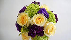 Fotos Blumensträuße Rose Eustoma Levkojen Hortensien Grauer Hintergrund