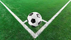 Fotos Fußball Rasen Ball Sport