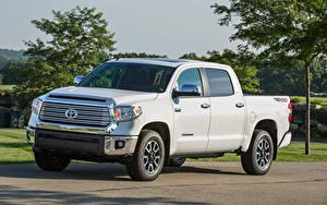 Bilder Toyota Pick-up Weiß Metallisch 2013, TRD, Tundra CREWMAX Limited automobil
