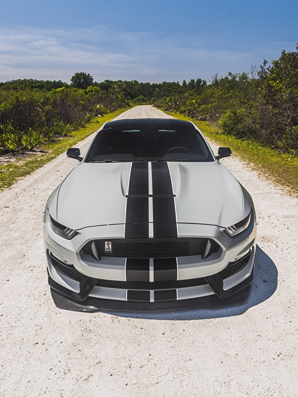 Wallpaper Ford Mustang Shelby Gt350 Auto Front Stripes 600x800
