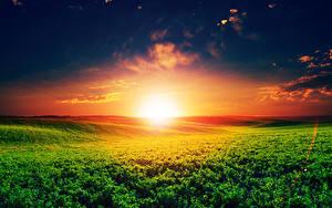 Fotos Landschaftsfotografie Sonnenaufgänge und Sonnenuntergänge Felder Himmel Sonne