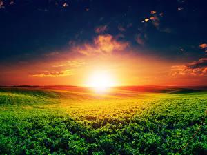 Fotos Landschaftsfotografie Sonnenaufgänge und Sonnenuntergänge Acker Himmel Sonne Natur