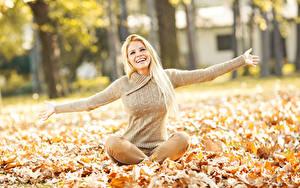Fotos Herbst Blondine Sitzend Blatt Sweatshirt Hand Lächeln Mädchens