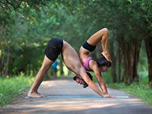 Fotos Gymnastik Mann Körperliche Aktivität Zwei Bein Hand Sport Mädchens