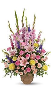 Fotos Sträuße Rosen Lilien Gladiolen Georginen Weißer hintergrund Vase Blumen