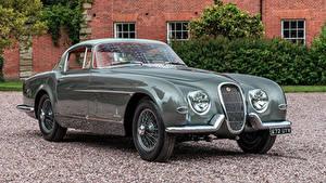 Bilder Jaguar Antik Pininfarina Metallisch Coupe 1954 XK120 SE Autos