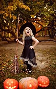 Bilder Halloween Kürbisse Kleine Mädchen Kleid Der Hut Schreiendes Kinder