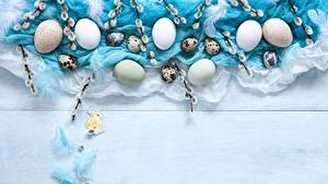 Hintergrundbilder Ostern Eier