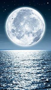 Photo Sea Ocean Moon Nature