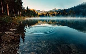 Fotos See Wasser Morgen Nebel Kreise Natur