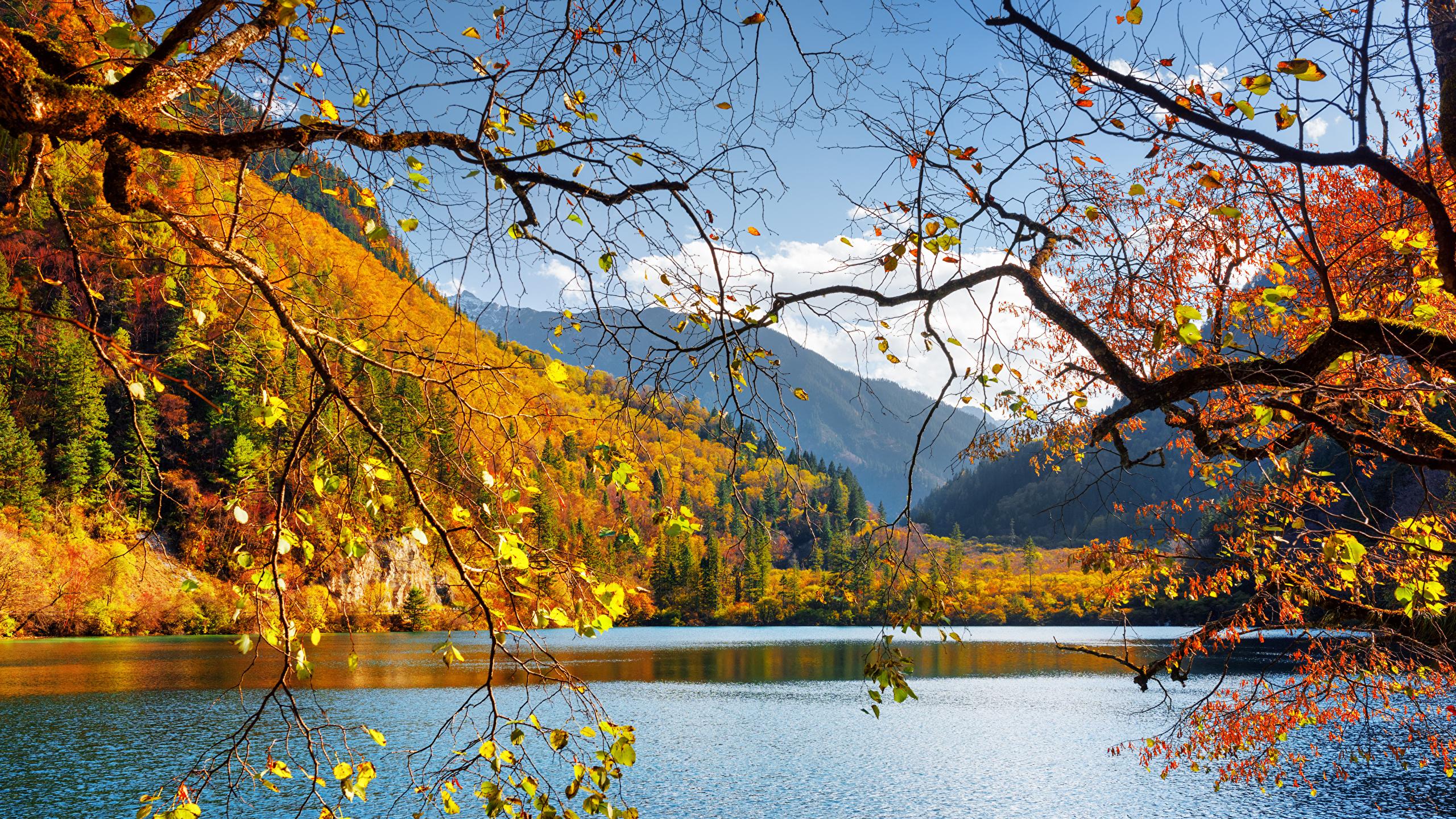 壁紙 2560x1440 中華人民共和国 九寨溝 公園 湖 秋 風景写真