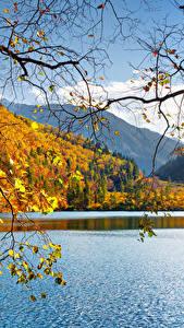 Bilder China Jiuzhaigou park Park See Herbst Landschaftsfotografie Ast Natur
