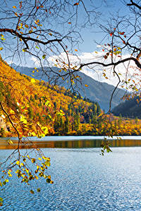 Bilder China Jiuzhaigou park Park See Herbst Landschaftsfotografie Ast