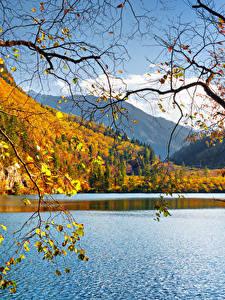 Images China Jiuzhaigou park Parks Lake Autumn Landscape photography Branches
