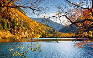 Sfondi desktop Cina Valle del Jiuzhaigou Parco Lago Autunno Paesaggio Rami Natura