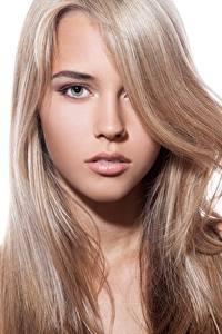 Fotos Schöner Haar Gesicht Starren Weißer hintergrund Dunkelbraun