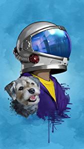 Bilder Hunde Wunder 2017 Helm Jacob Tremblay Film