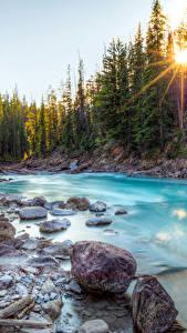 Bilder Kanada See Wälder Steine Fluss Landschaftsfotografie Lichtstrahl
