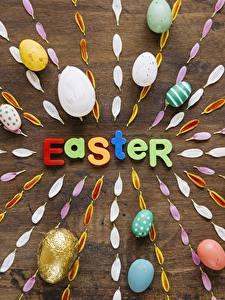 Bilder Ostern Ei Englisch Petalen Wort