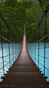 Pictures Forests Rivers Bridges Nature