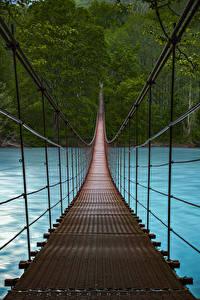 Hintergrundbilder Wälder Flusse Brücken