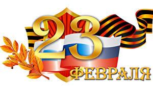 Hintergrundbilder Feiertage Tag des Verteidigers des Vaterlandes Weißer hintergrund Russisches Flagge Band