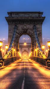 Hintergrundbilder Ungarn Budapest Brücke Löwe Skulpturen Zaun Nacht Straßenlaterne HDRI Städte