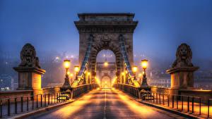 Hintergrundbilder Ungarn Budapest Brücke Löwe Skulpturen Zaun Nacht Straßenlaterne HDRI