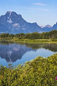 Fotos Gebirge See Vereinigte Staaten Park Grand Teton National Park, Wyoming
