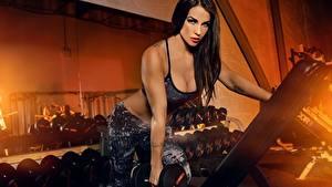 Bilder Fitness Model Hanteln Trainieren junge Frauen Sport
