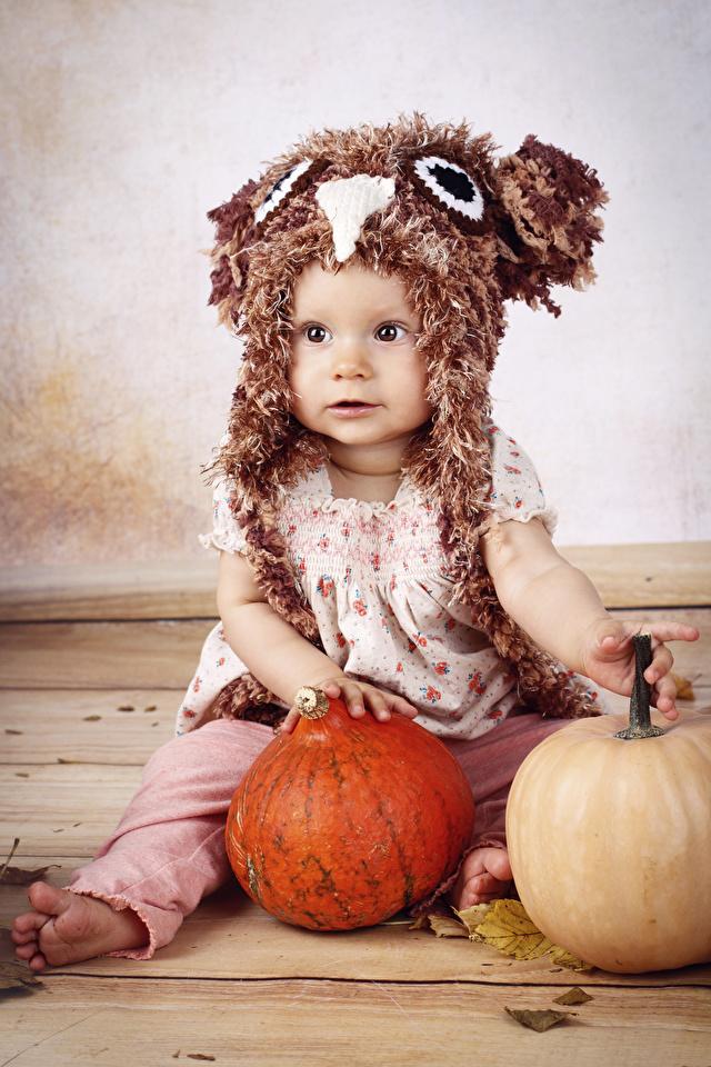 Hintergrundbilder Kleine Mädchen Kinder Mütze Kürbisse sitzen 640x960 sitzt Sitzend