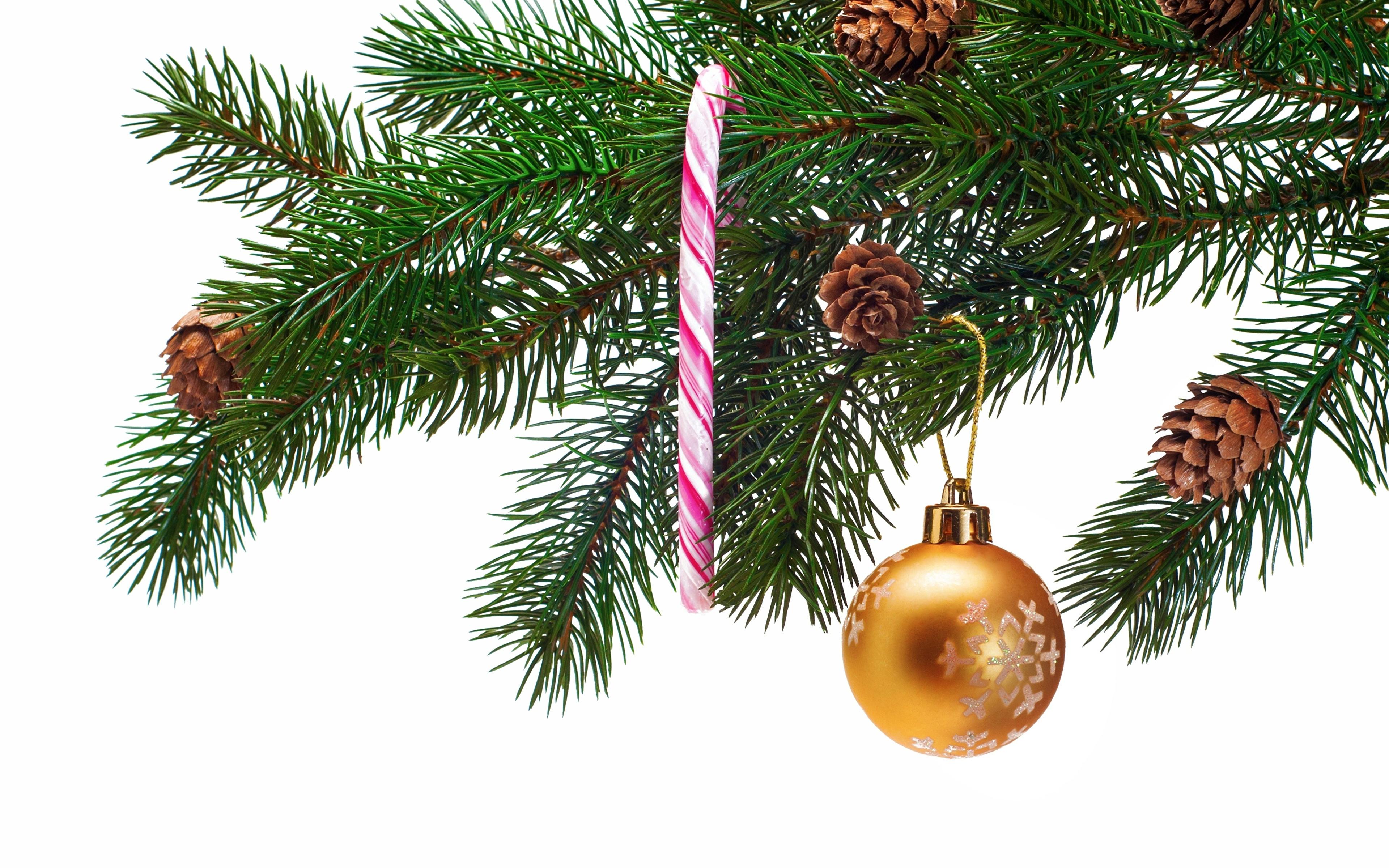 Weihnachtsbaum Ast.Bilder Neujahr Tannenbaum Ast Zapfen Kugeln Feiertage 3840x2400