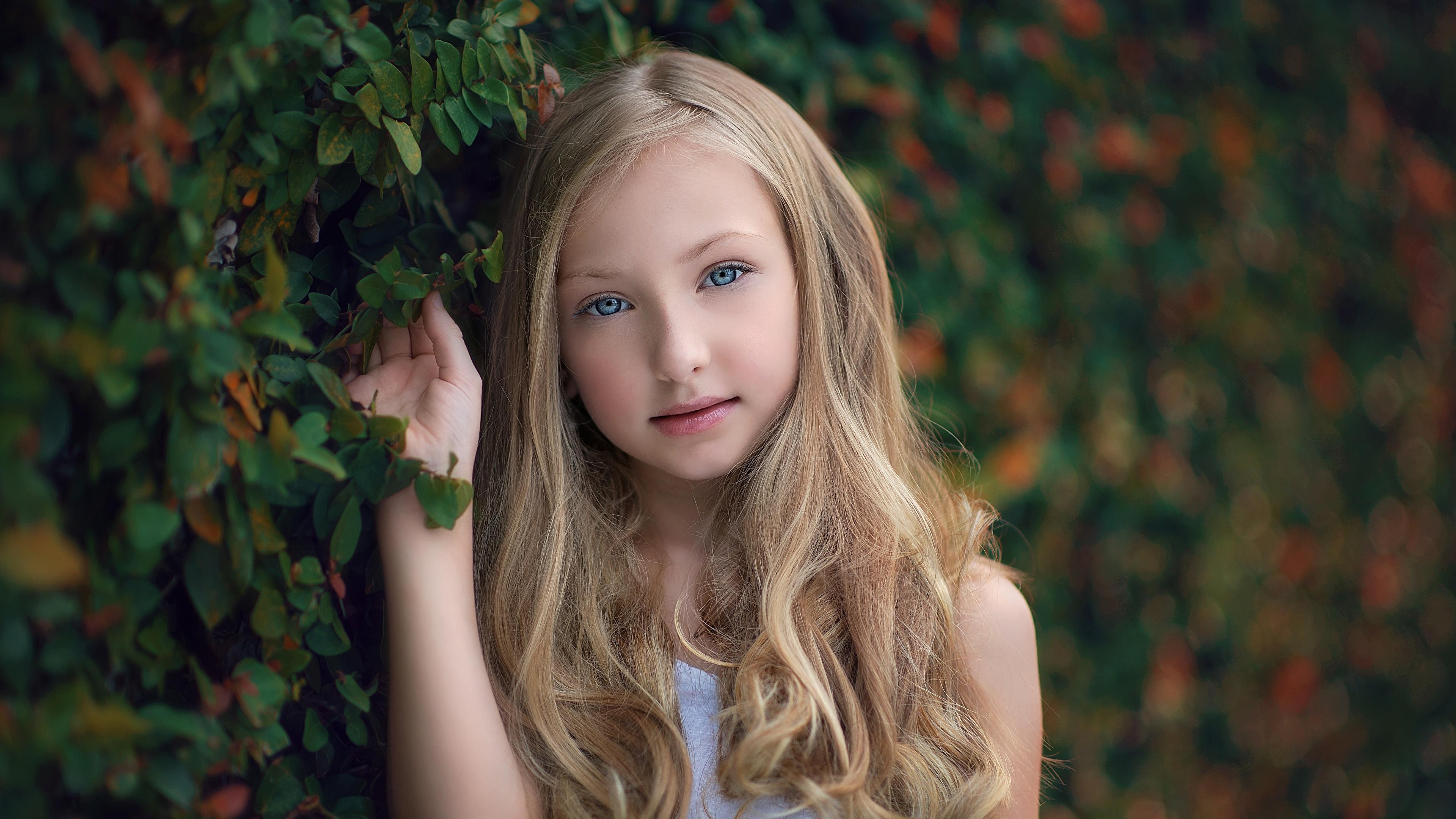 Fotos Kinder Kleine Mädchen Blondine Frisur Haar Blick 11x11