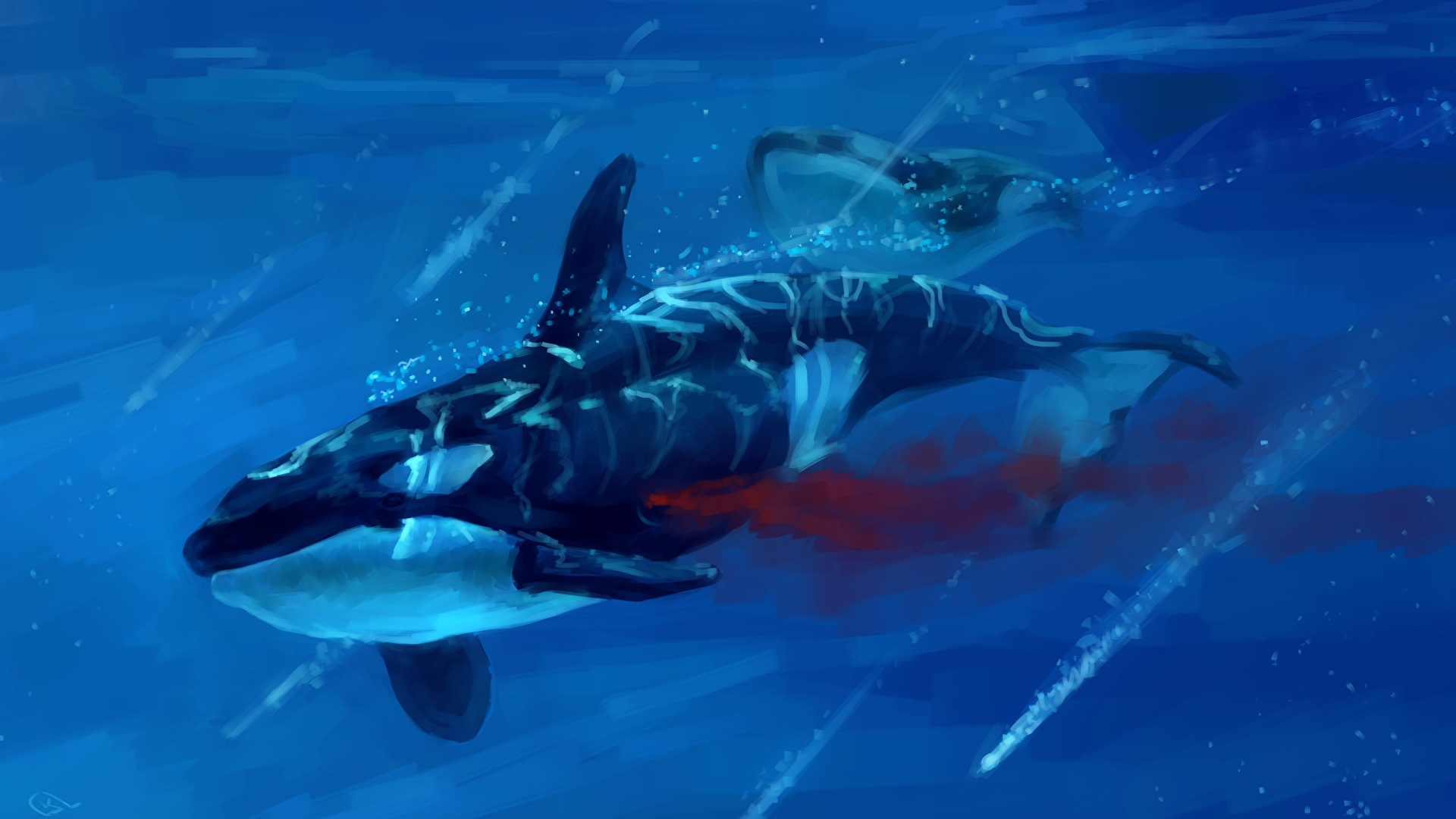 Wallpaper Orca Underwater World Blood Animal Painting Art