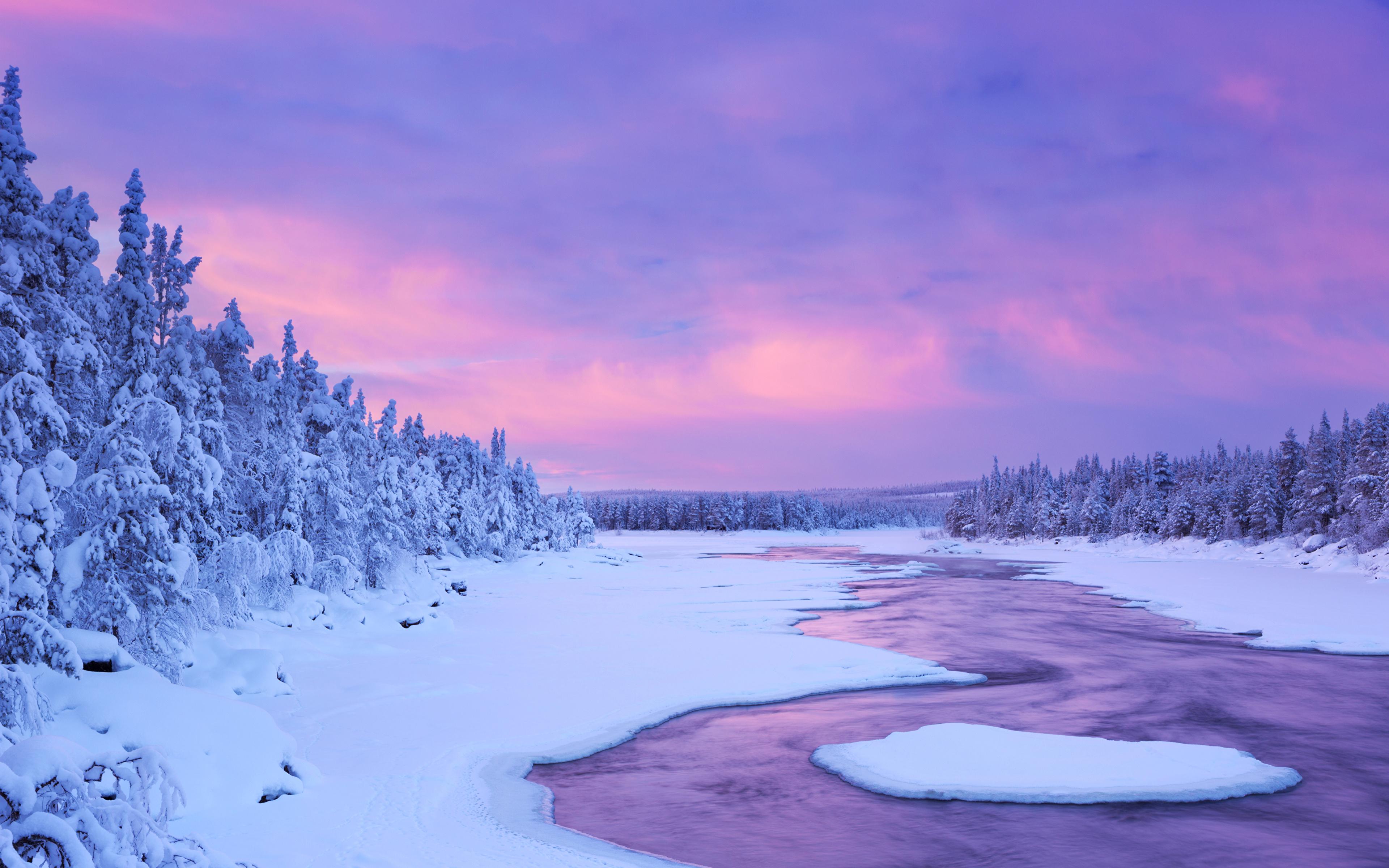 Fonds d'ecran 3840x2400 Laponie région Finlande Hiver Ciel Neige Picea Nature télécharger photo