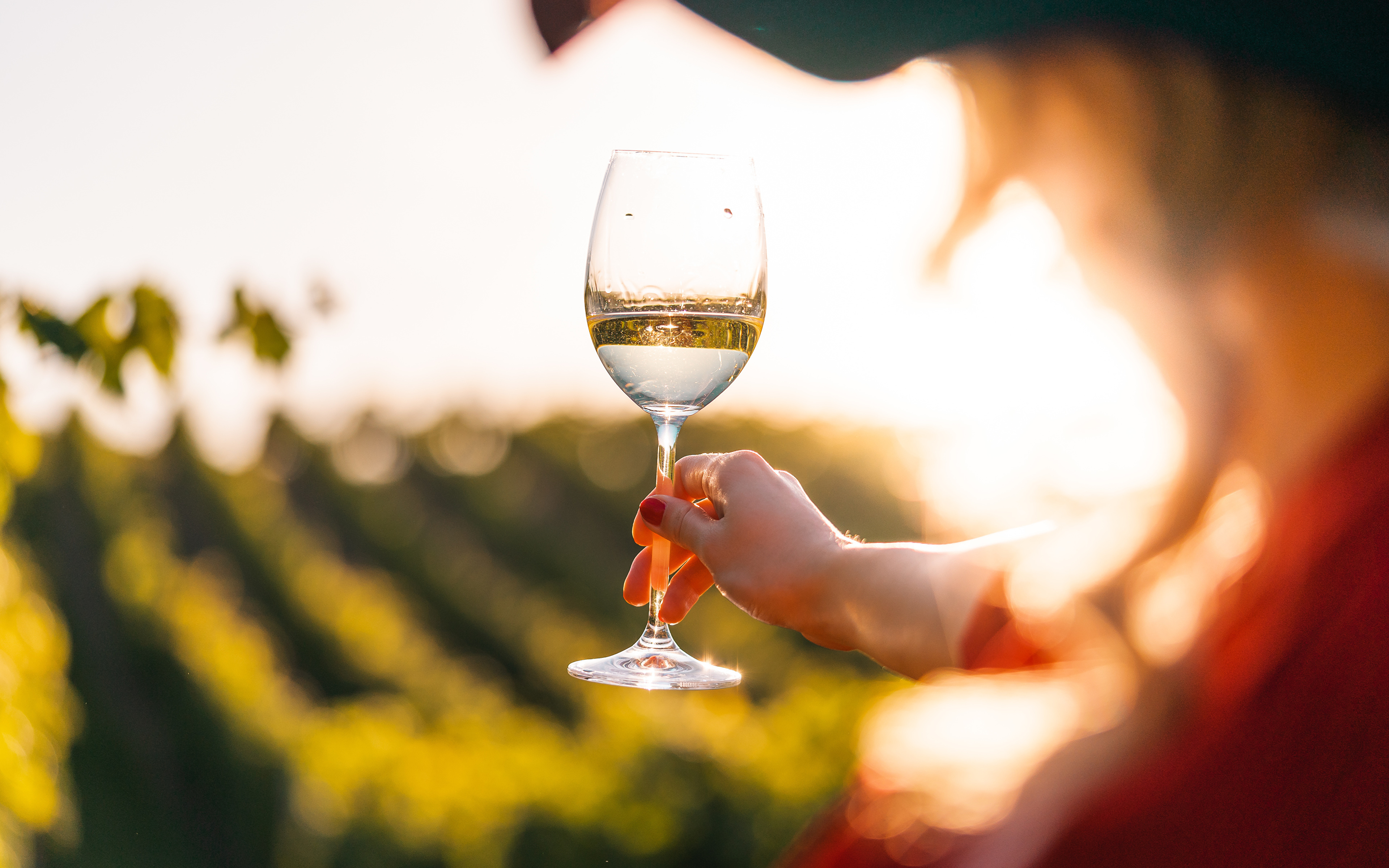 3840x2400 Vino Bokeh Vaso de vino Mano fondo borroso