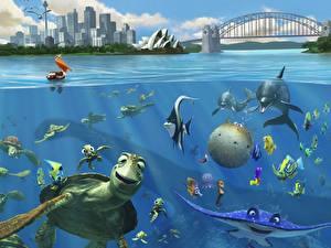 Fotos Disney Findet Nemo Animationsfilm