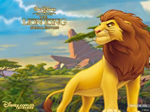 Hintergrundbilder Disney Der König der Löwen