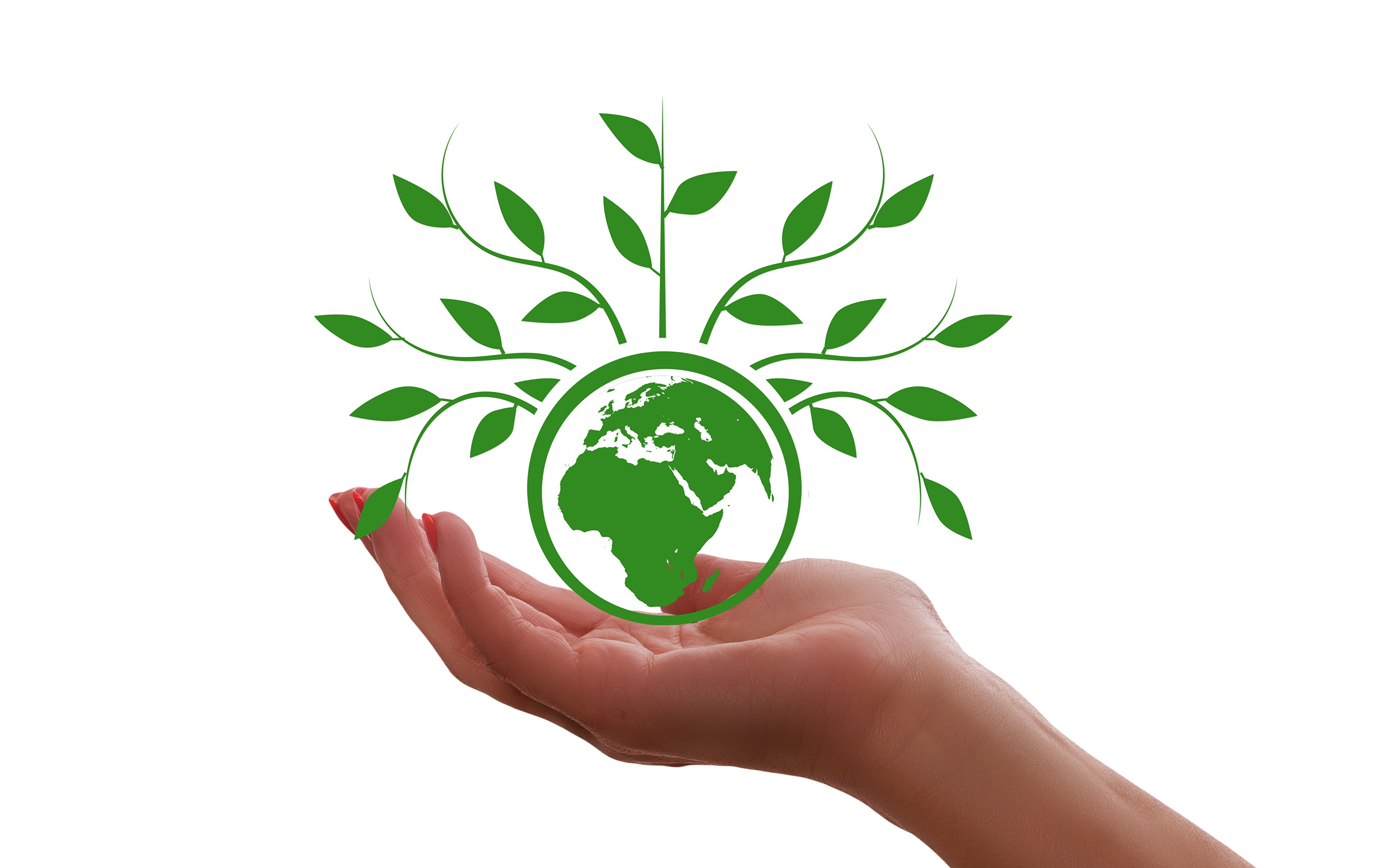 Wallpaper Earth Planet Hands Plants White Background 3840x2400