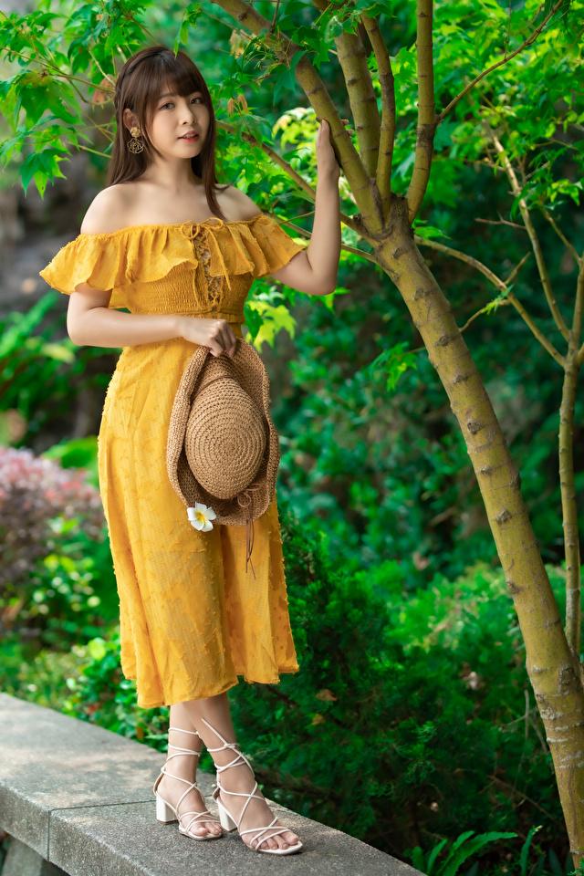 Фото Поза Шляпа Девушки Азиаты смотрят платья 640x960 для мобильного телефона позирует шляпы шляпе девушка молодая женщина молодые женщины азиатки азиатка Взгляд смотрит Платье