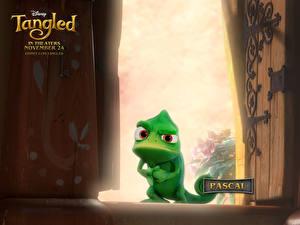 Fotos Rapunzel – Neu verföhnt Animationsfilm