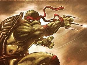 Fotos Teenage Mutant Ninja Turtles  Zeichentrickfilm