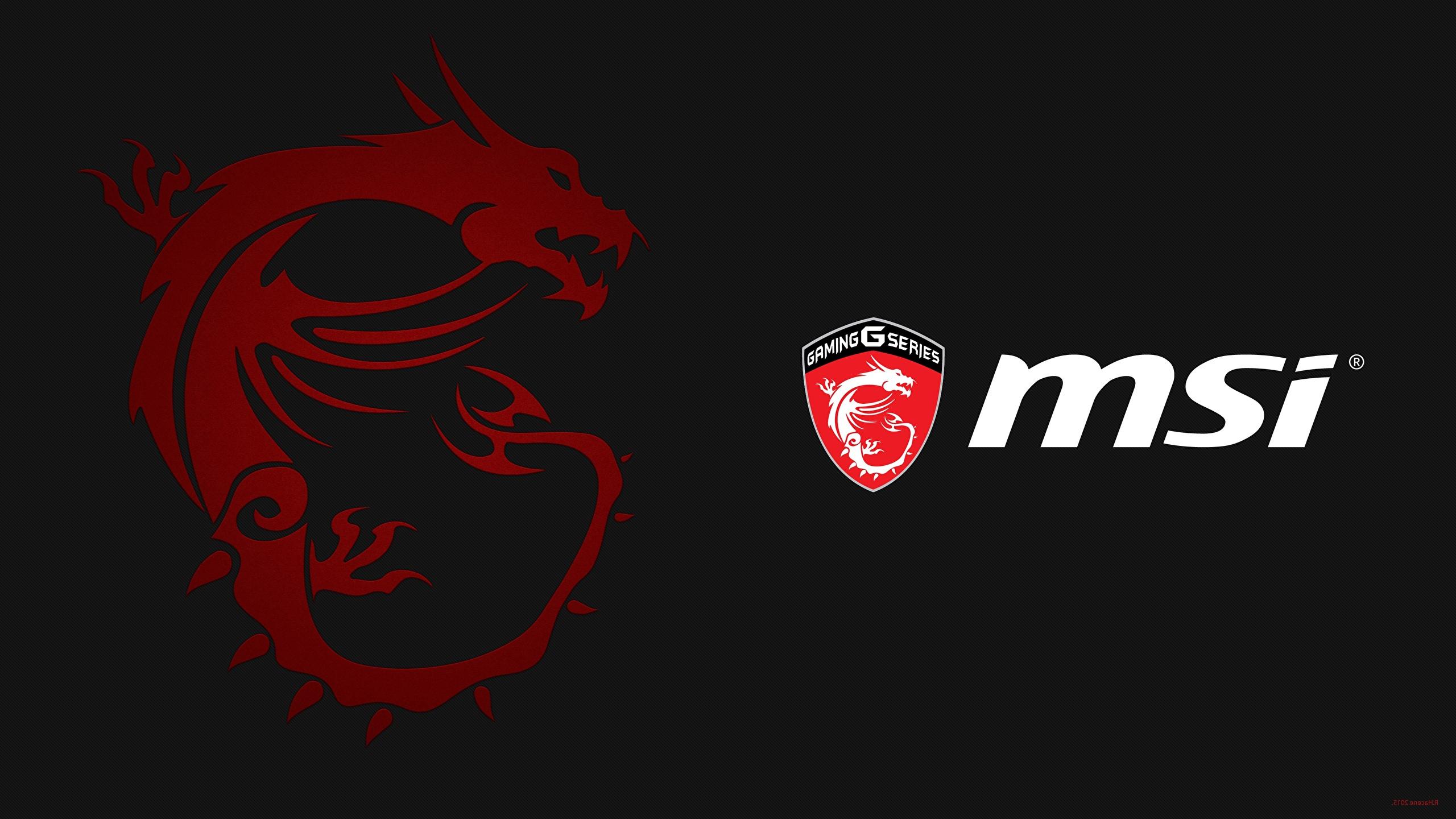 Wallpaper Dragon Logo Emblem Msi Computers Black 2560x1440