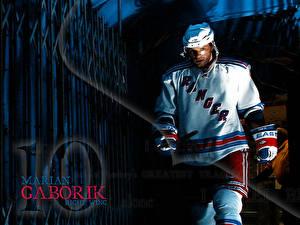 Pictures Hockey Marian Gaborik athletic