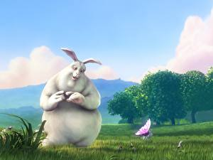 Hintergrundbilder Kaninchen