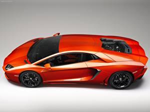 Hintergrundbilder Lamborghini Autos