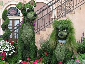 Bilder Viel Frankreich Park Hunde Walt Disney Blumen