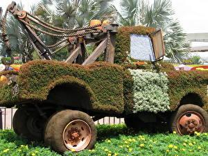 Bilder Viel Frankreich Cars Park Walt Disney Blumen Autos